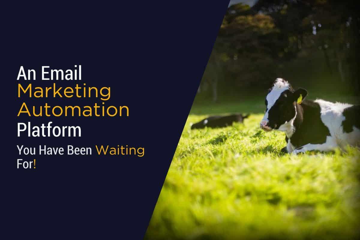 Email Marketing Automation Platform